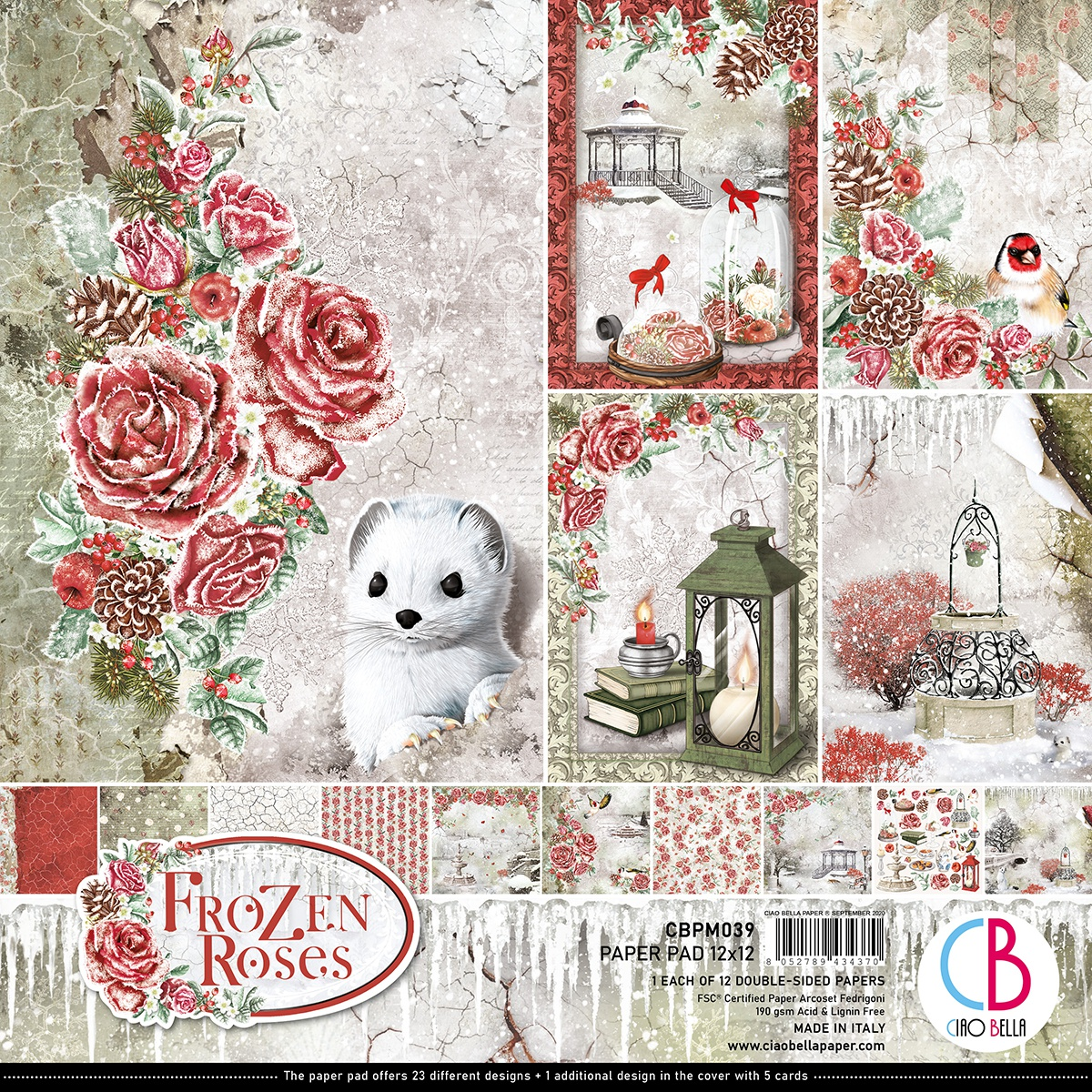 Ciao Bella Double-Sided Paper Pack 90lb 12X12 12/Pkg-Frozen Roses, 12 Designs/1 Each