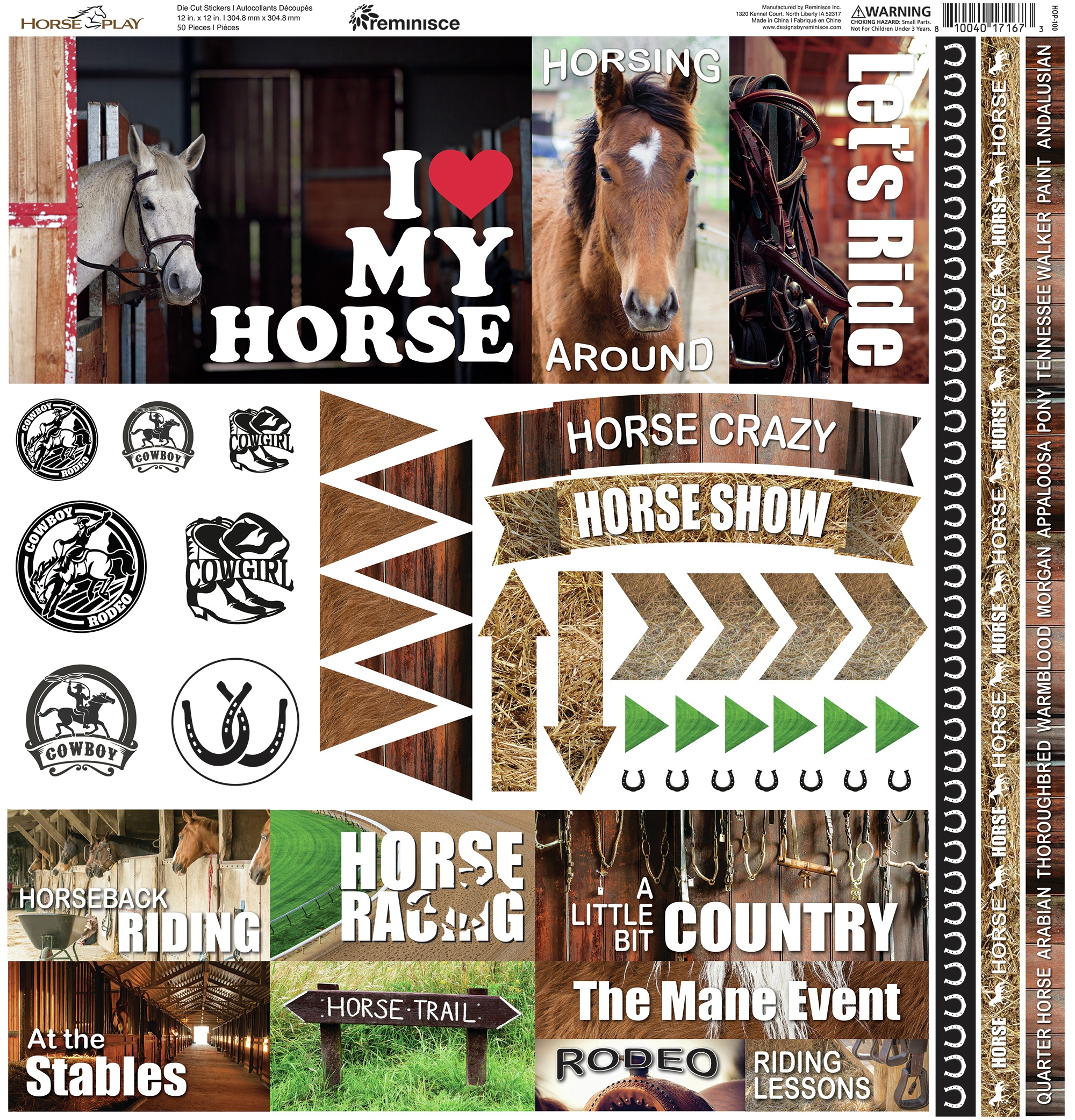 Reminisce Elements Cardstock Stickers 12X12-Horseplay
