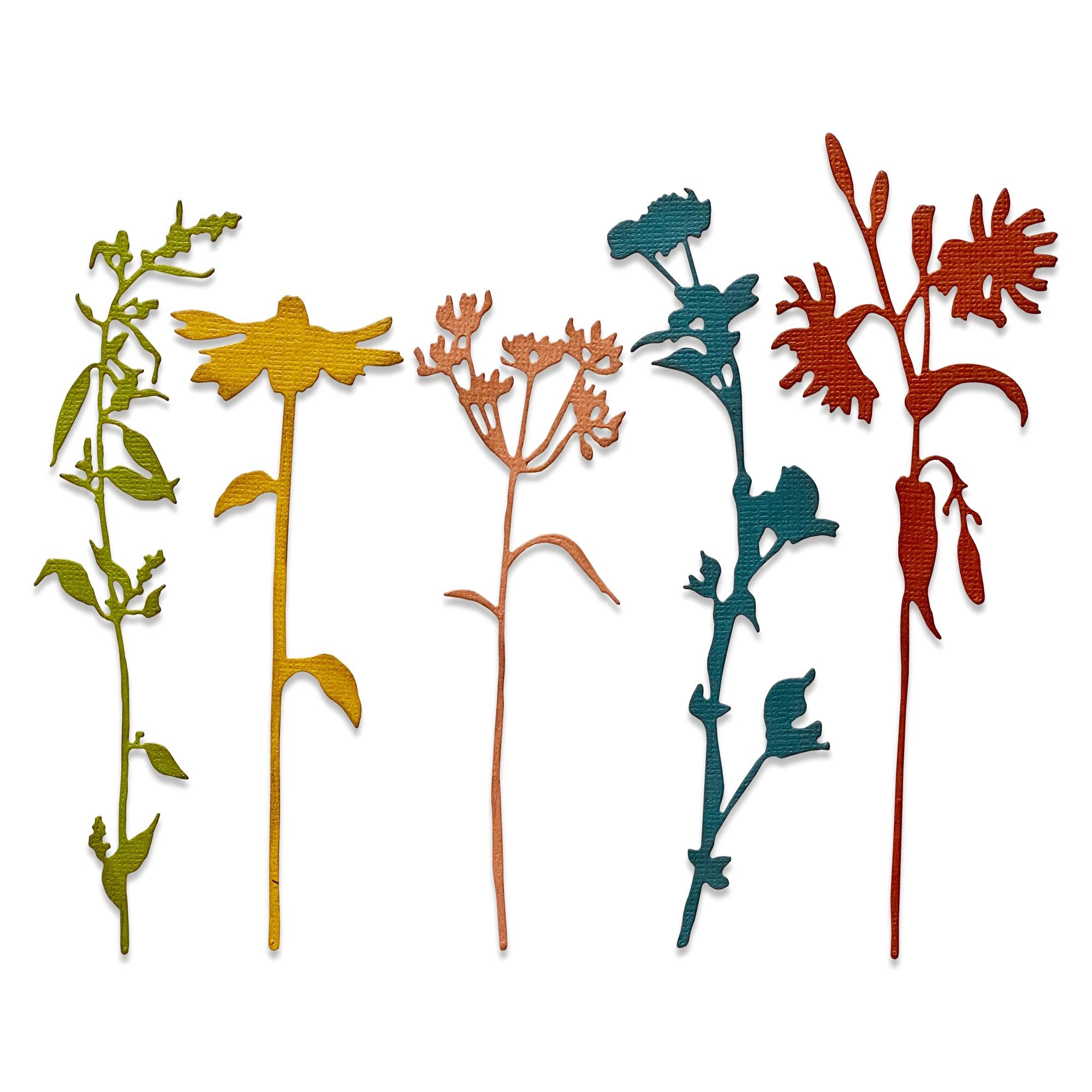 Sizzix Thinlits Dies By Tim Holtz 5/Pkg-Wildflower Stems #3