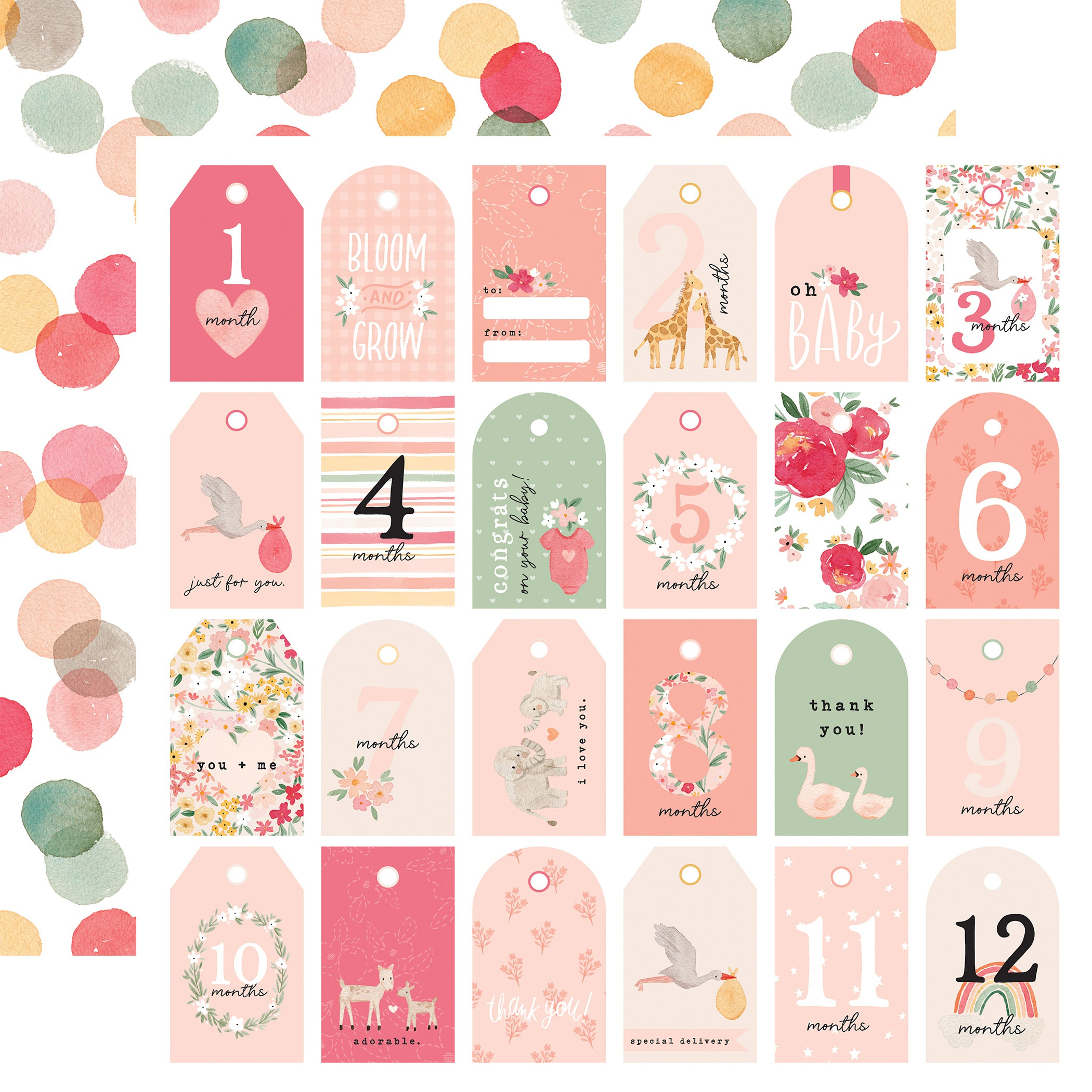 Echo Park - Welcome Baby Girl - GIRL TAGS - 12x12 Double-Sided Paper