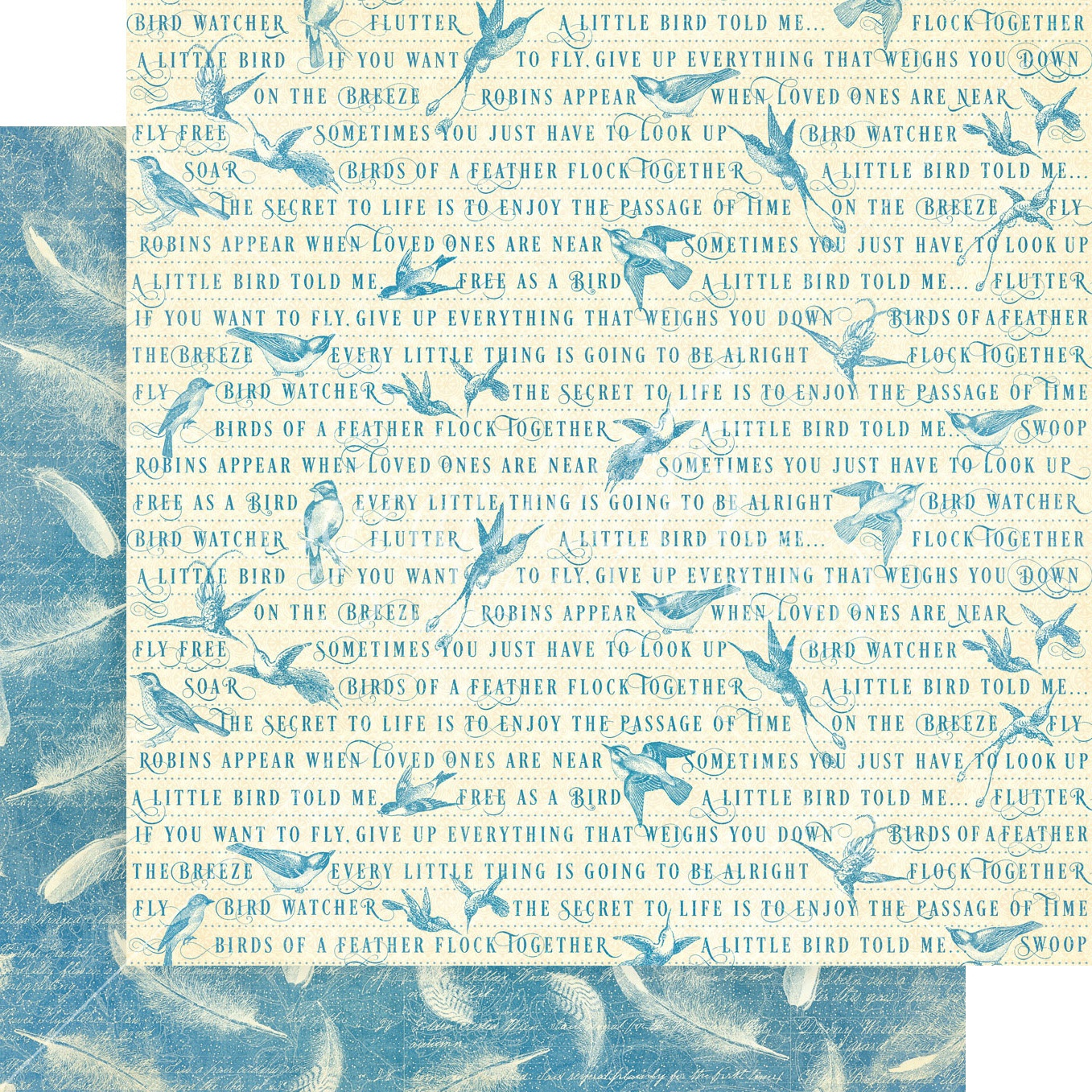Bird Watcher Double-Sided Cardstock - Feather Your Nest 12x12