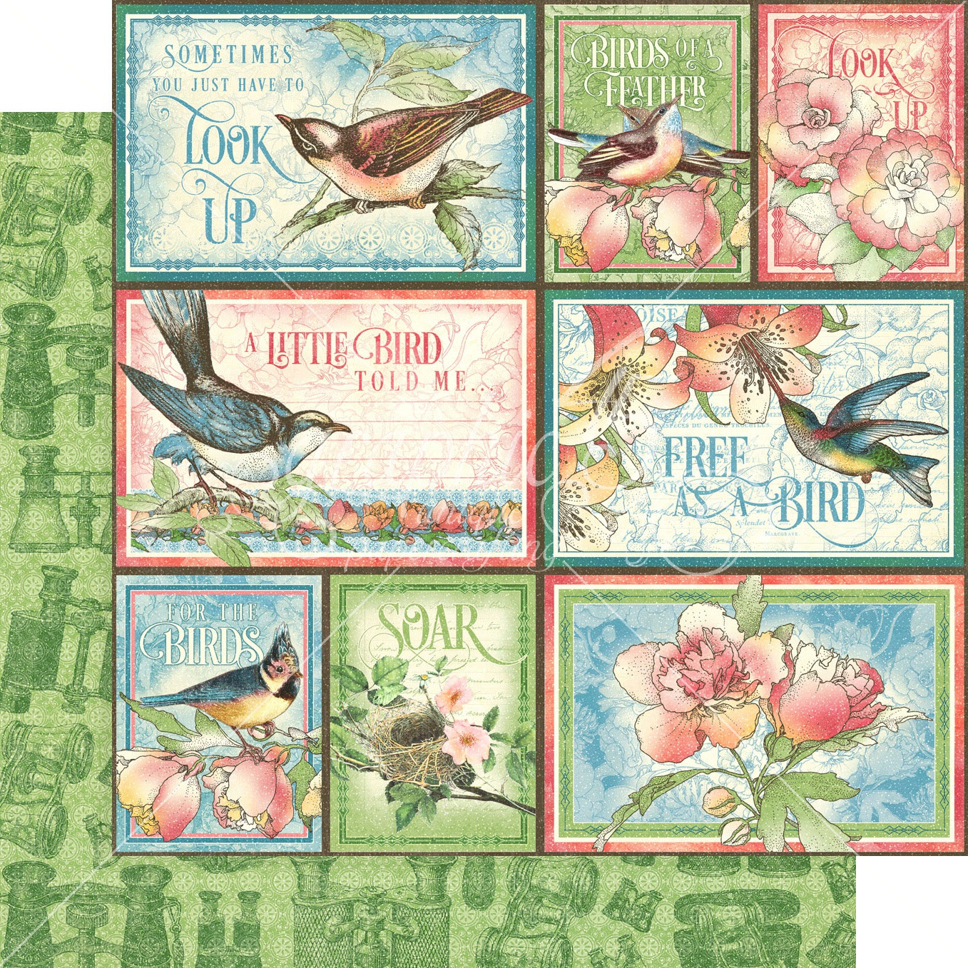 Bird Watcher Double-Sided Cardstock - Learn to Fly 12x12