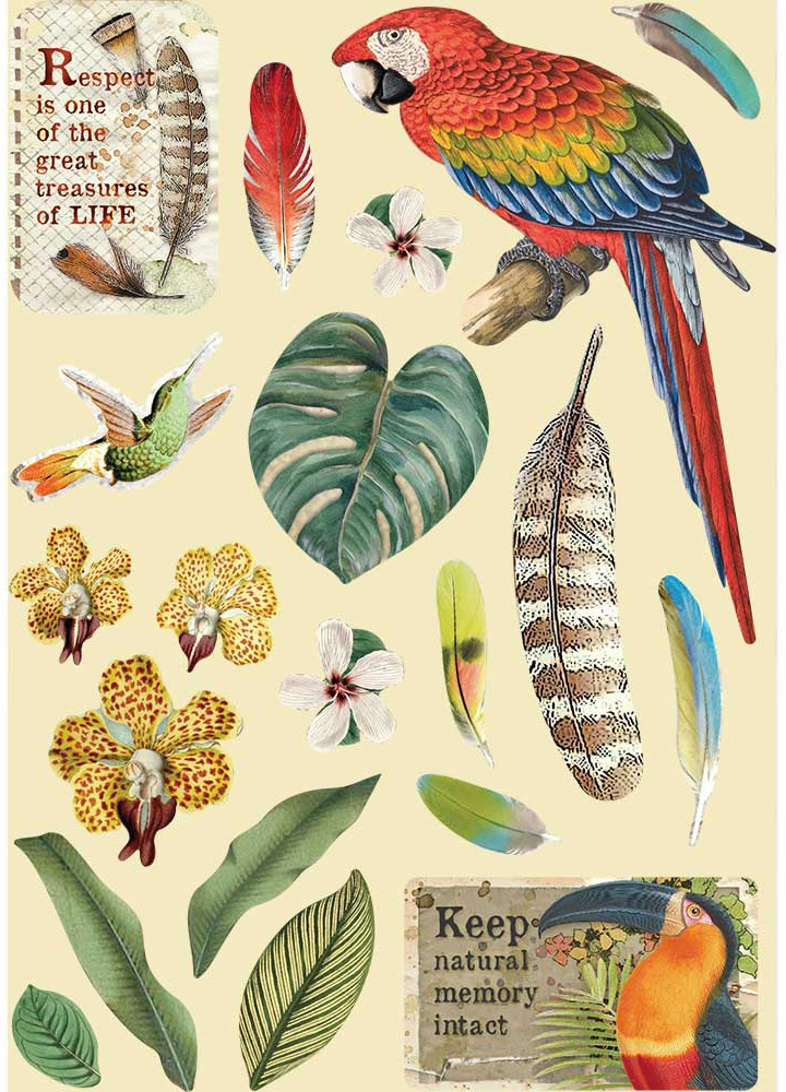 Stamperia Wooden Shapes A5-Parrot, Amazonia