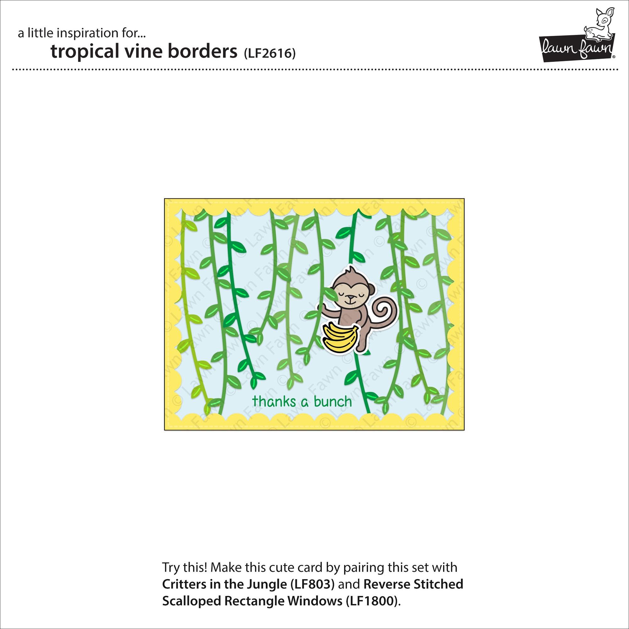 Lawn Cuts Custom Craft Die-Tropical Vine Borders