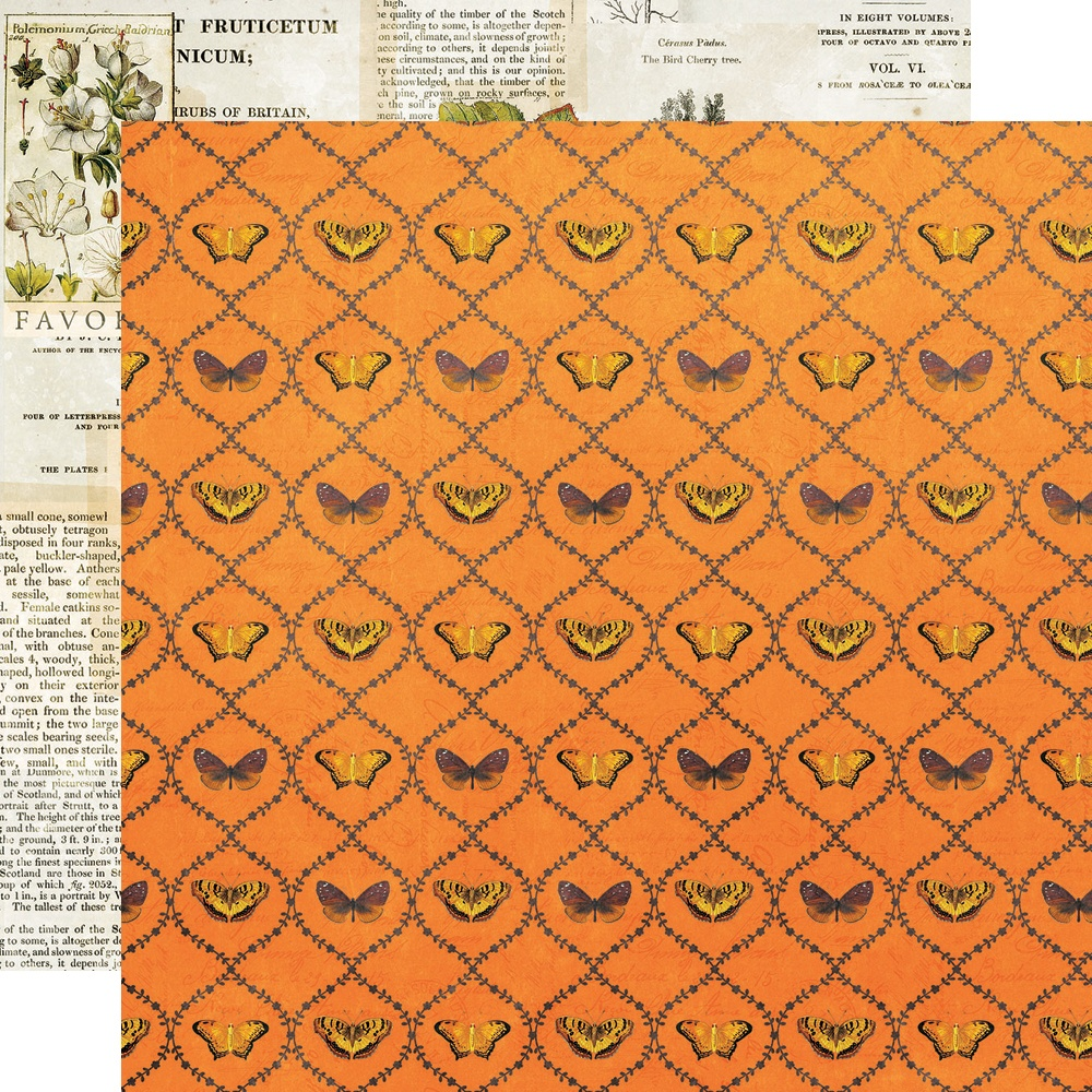 Simple Vintage Country Harvest - NATURE'S WONDER - 12x12 Double-Sided Paper