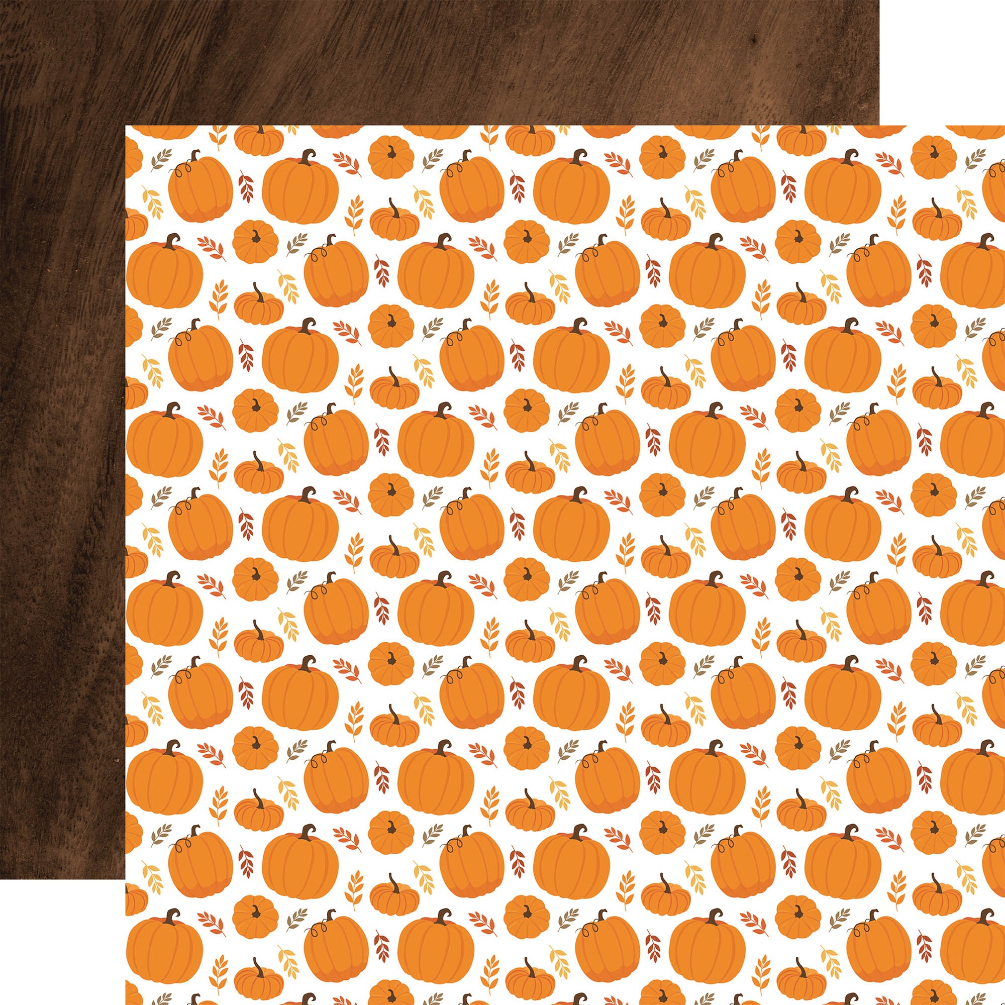 Echo Park - Fall - PUMPKIN PATCH - 12x12 Double-Sided Paper