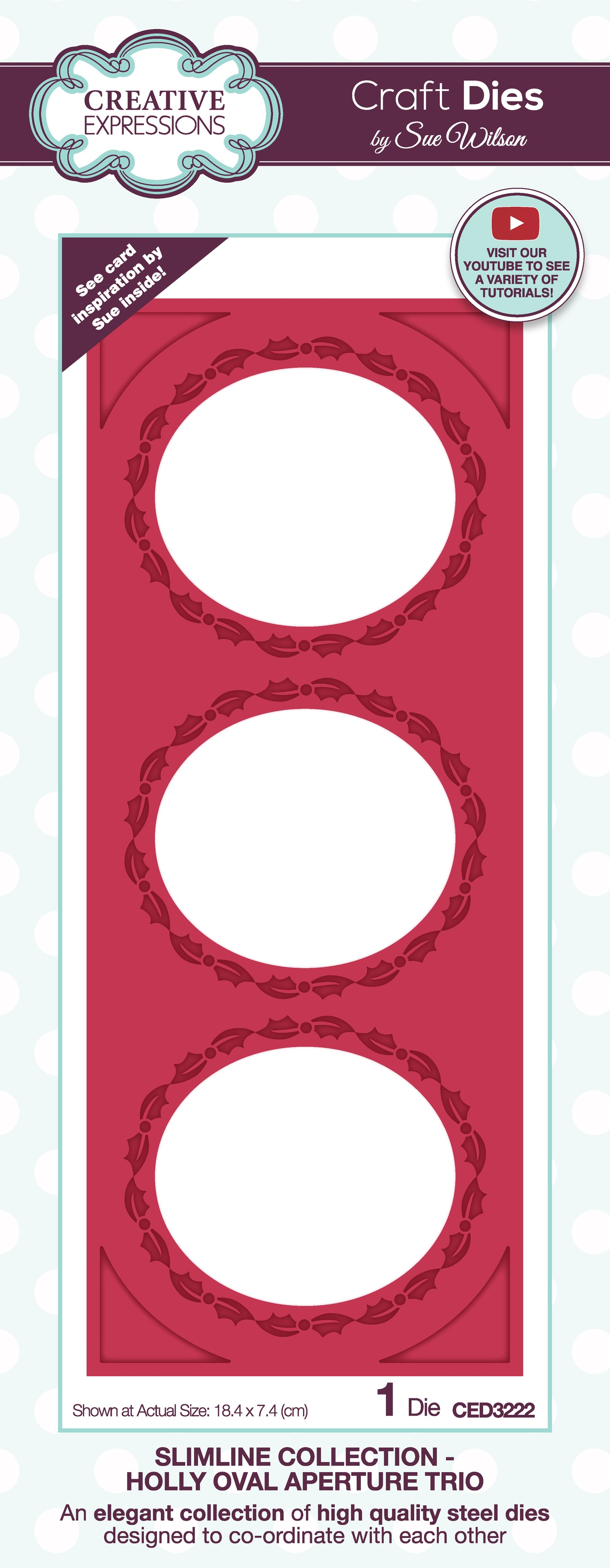 Creative Expressions Craft Dies By Sue Wilson-Slimline- Holly Oval Aperture