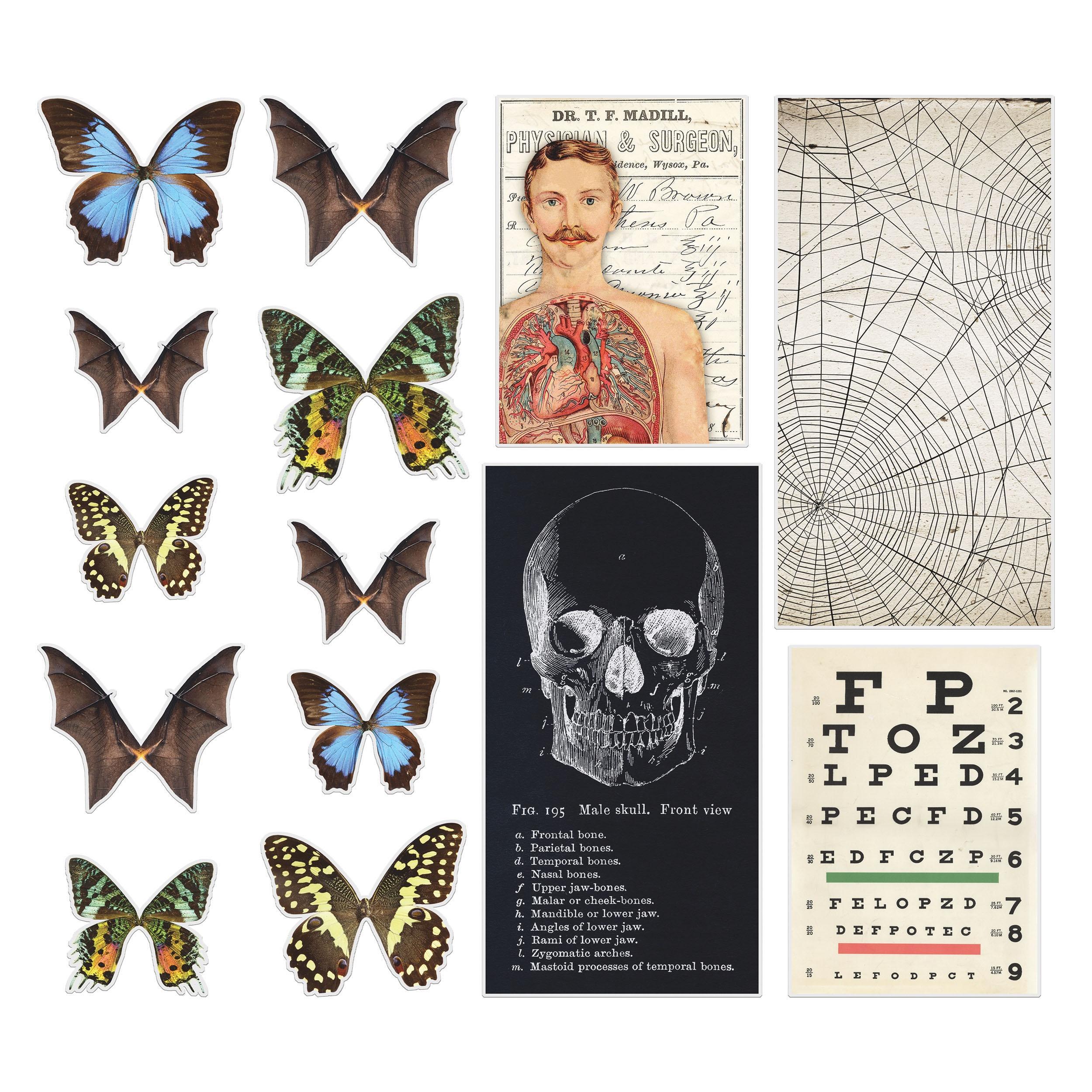Idea-Ology Transparencies 14/Pkg-Halloween