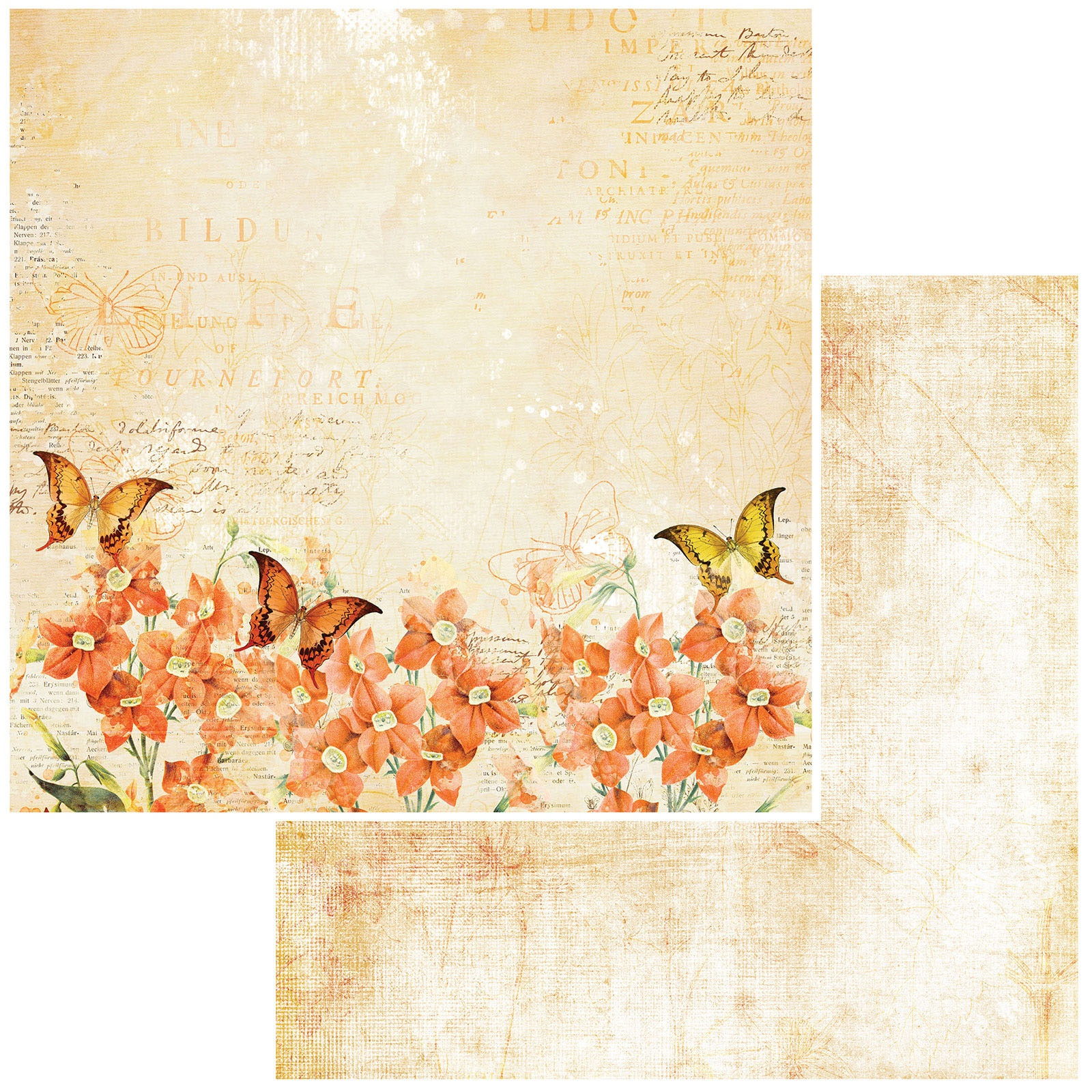 49 And Market - Vintage Artistry Mango - ORANGE BLOSSOM - 12x12 Double-Sided Paper