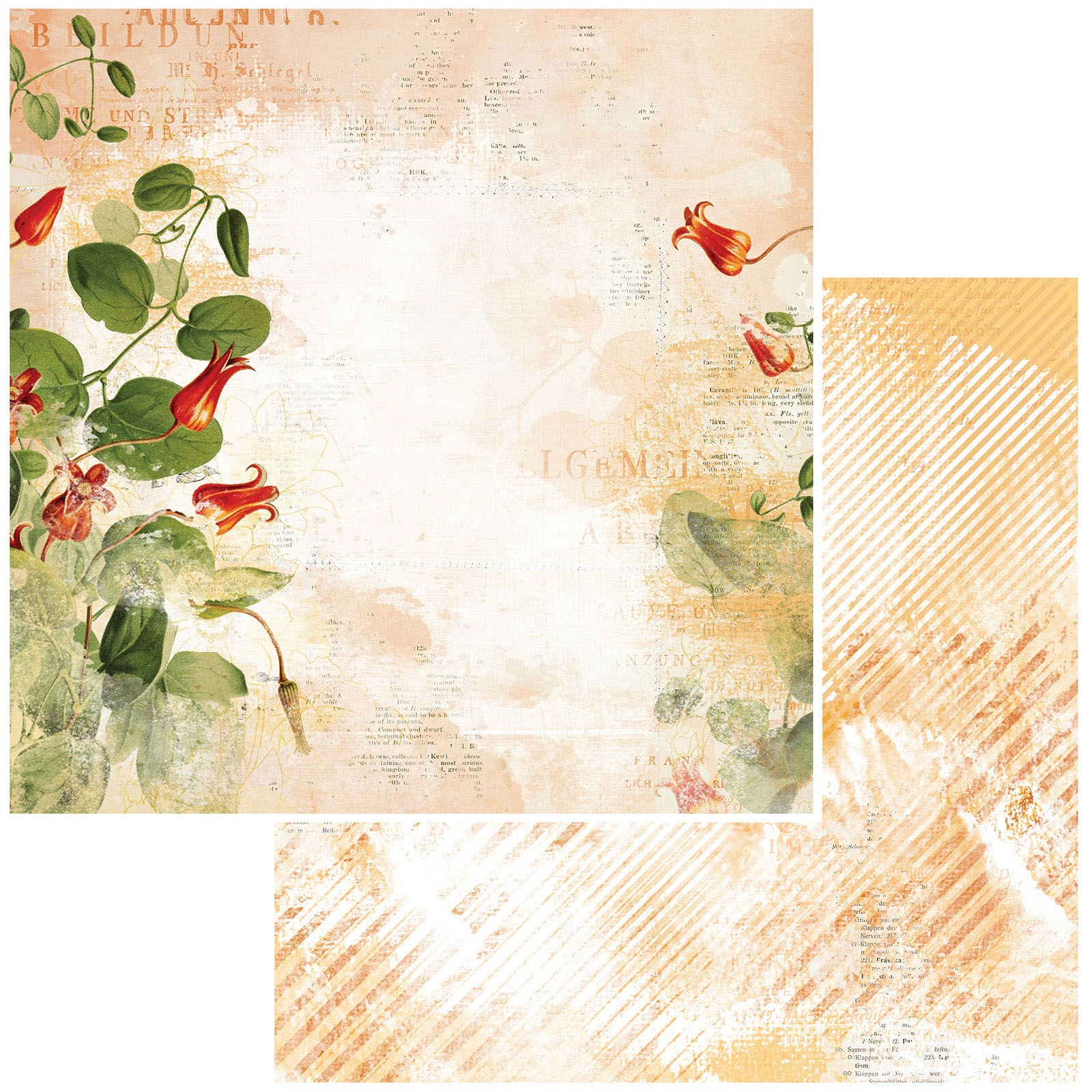 49 And Market - Vintage Artistry Mango - GINGER BEACH - 12x12 Double-Sided Paper