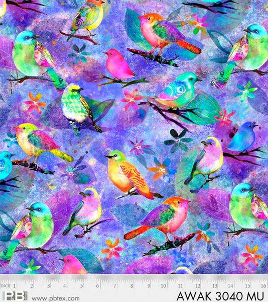 Awakening Birds Multi