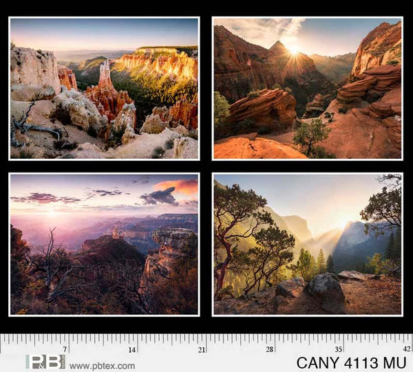 Canyons  51 Panel CANY 4113 MU