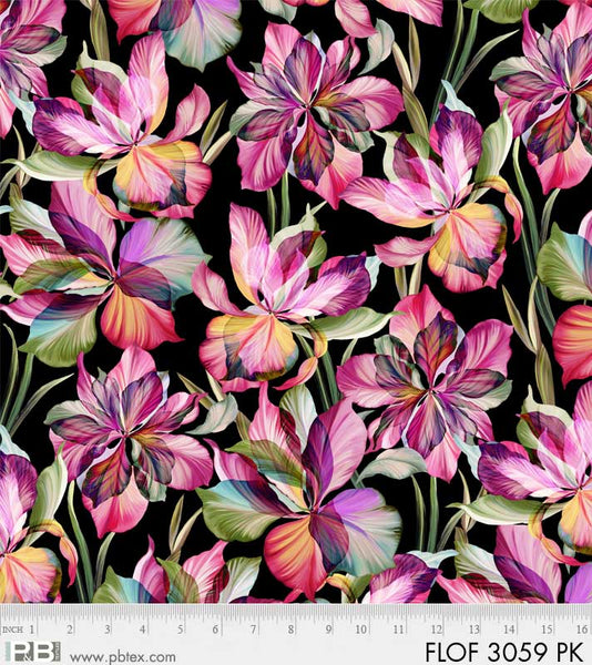 Flora Fantasia - Multi Color on Black Background