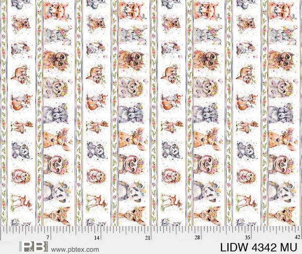 Little Darlings LIDW 4342 MU