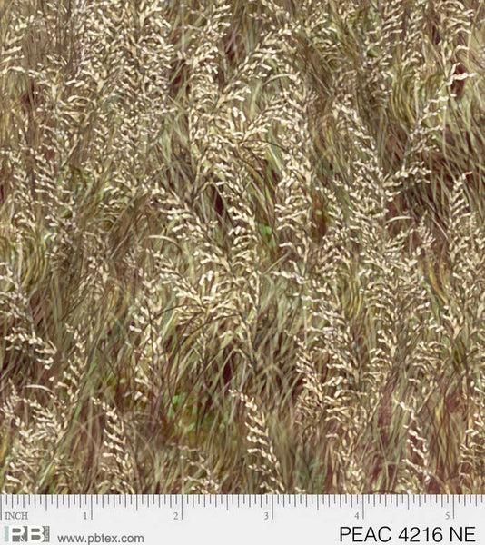 PEAC 4216 NE grass