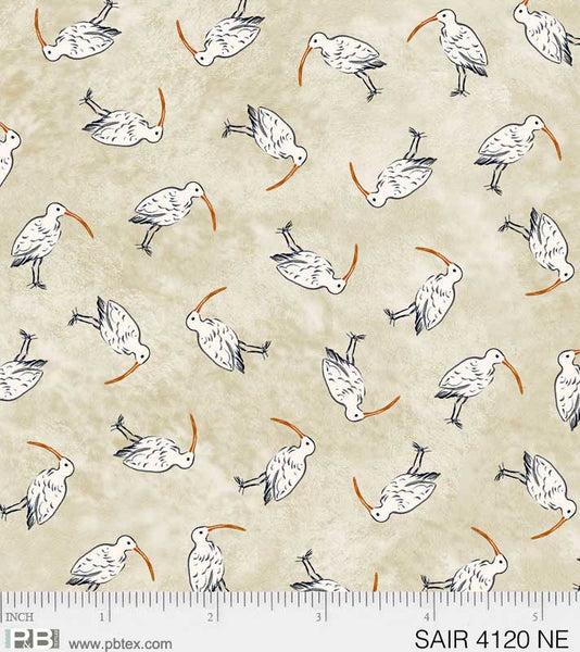 SAIR 4120 NE shore birds