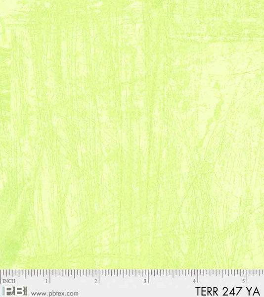 Terra Texture 247 YA