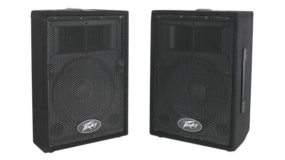 Peavey PV i 10 speaker enclosure (pair)