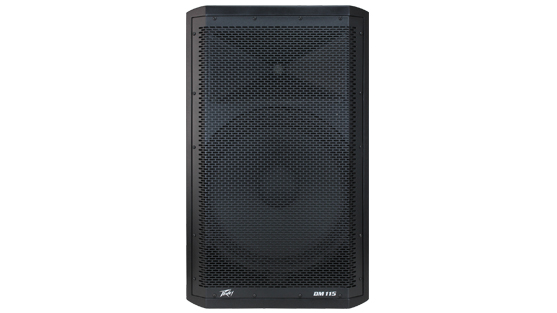 Peavey Dark Matter Series DM 115 Sub powered speaker
