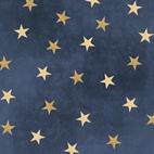 Gettysburg STARS NAVY