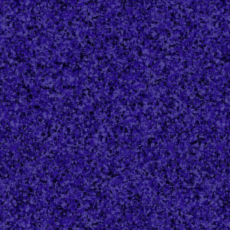 CB Afican Violet