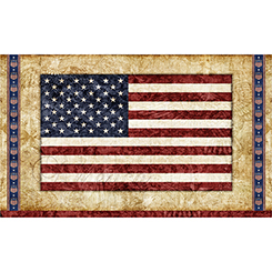 HOME OF THE BRAVE AMERICAN FLAG PANEL