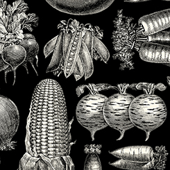 FARM TO TABLE VEGETABLE ETCHINGS