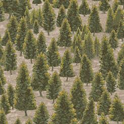MOUNTAIN ELK PINE TREES