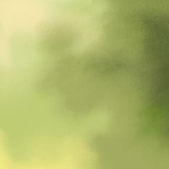 SOPHIA GREEN TONAL BLENDER 26078-H