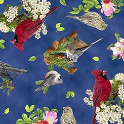 SONGS OF NATURE SONGBIRD TOSS