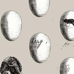 Fowl Play - Fresh Eggs Gray