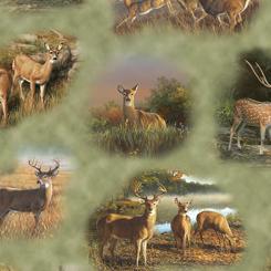 Deer Valley DEER VIGNETTES GREEN