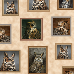 *Nocturnal Wonders GREAT HORNED OWLS SMALL PATCHES TAN