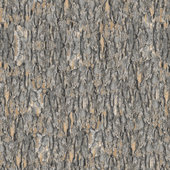 :Q T Nocturnal Wonders TREE BARK GRAY 27068 - K