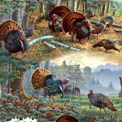 QT Fabrics Turkey Hill TURKEY SCENIC MULTI