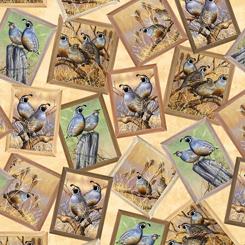 Quilting Treasures Pheasant Fields 27244-E QUAIL PATCH CREAM