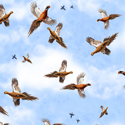 Quilting Treasures Pheasant Fields 27245-B  PHEASANTS IN FLIGHT SKY BLUE