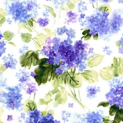 Hydrangea Blossoms WATERCOLOR HYDRANGEAS WHITE