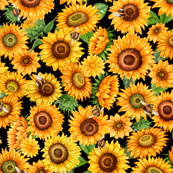 ALWAYS FACE SUNSHINE PACKED SUNFLOWERS BLACK