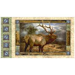 QT - Wild Elk Panel