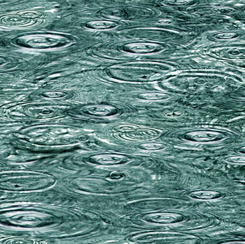 Open Air by QT Fabrics - Raindrops on Water - River