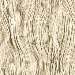 Open Air for QT Fabrics DRIFTWOOD Rafia 28113-AE