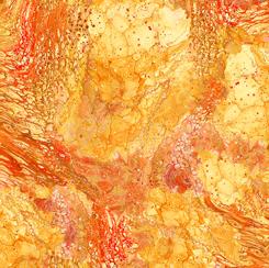 Fusion II Surge Orange 28291O