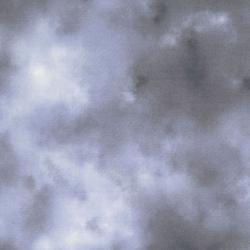 RJR Danscapes Grey Sky