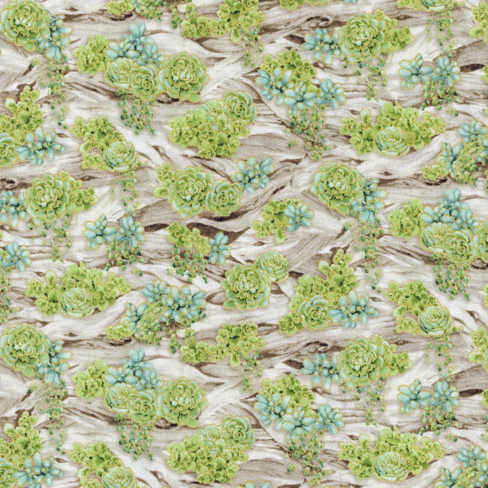 Driftwood Garden - Aloe<br>2887-001