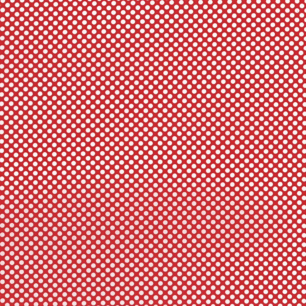 AMARYLLIS white Dots on Red