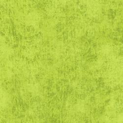 Denim - Lime - 3212-032