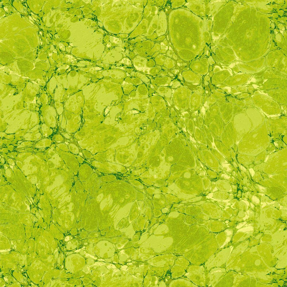 JBP - 3365-003 - Granite - Chartreuse