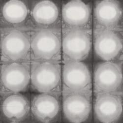 Pollinator - Circles - Foglight Fabric