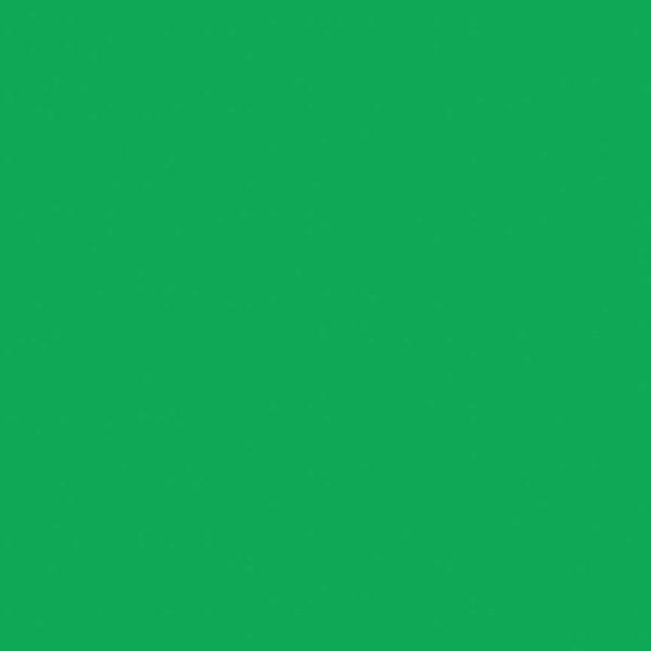Solid Emerald City - Riley Blake Confetti Cottons